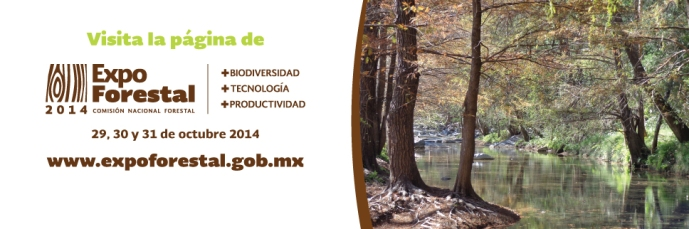 Banner-Expo-forestal-2014-968x3221